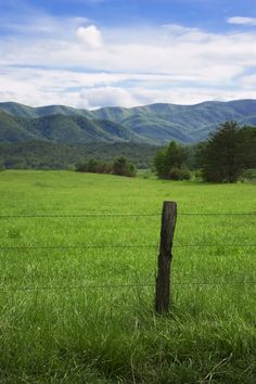 Breathtaking view of Cades Cove! Love this view for my drawing