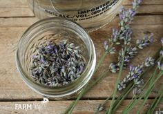 Have a bountiful crop of lavender from your garden, local farmer's market or a trip to a lavender farm, but not sure what to do with it? Here are 10 useful and pretty things that you can make with tha Lavender Uses, Lavender Crafts, Dried Lavender Flowers, Lavender Soap, Herbal Tinctures, Herbalism, Diy Natural Beauty Recipes, Homemade Beauty, Lemon Balm Uses