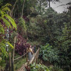 Tam-awan Village Baguio City, Philippines, Plants, Garden, Travel, Voyage, Garten, Trips, Viajes