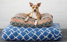 Boho Pet Beds: Jiti, P.L.A.Y. & More - Gilt Home