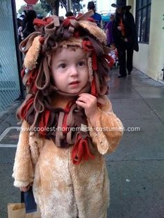 Homemade Lion Costume: This Homemade Lion Costume is a simple PJ pattern out of fake fur for the body.  Loops of polar fleece attached to a detachable collar fill out the mane.