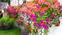 How to Attach Flower Boxes Without Drilling Holes