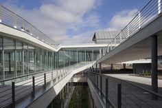 Nova Sede Docalia e Data Center RSI - Galeria de Imagens | Galeria da Arquitetura