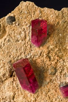 This is one of the most famous red beryl (emerald) specimens in the world. It is illustrated in the Mineralogical Record several times, in the American Treasures book, and was exhibited at the AMT exhibits in Tucson 2008.