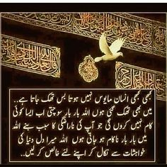 Really want to change myself Inspirational Quotes In Urdu, Best Islamic Quotes, Islamic Phrases, Muslim Quotes, Prayer Verses, Quran Verses, Allah Quotes, Quran Quotes, Poetry On Eyes