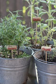 How To: Wine Cork Garden Markers (guess it doesn't work with boxed wine?)