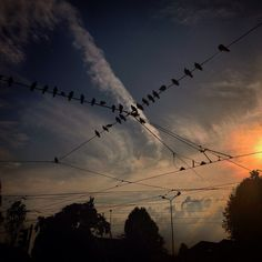 Afternoon in Milan ☀️#milan #city #afternoon #friends #sun #iphone5 #i_love_photo #pigeons #cloud #pinterest #photo #instagram #foursquare #twitter #tumblr #facebook #top #sunset # (presso Milano Via Ugo Bassi)