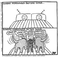 """Sunday Morning Sleep-Ins ..... A Distant Memory""  ~  Off The Leash  (FB)"
