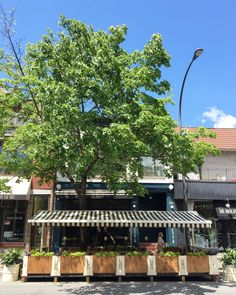 Bar Henrietta Bar Terrasse Paris, Disney Village, Table Bar, Restaurants, Restaurant Bar, Pergola, Outdoor Structures, Outdoor Decor, Coups