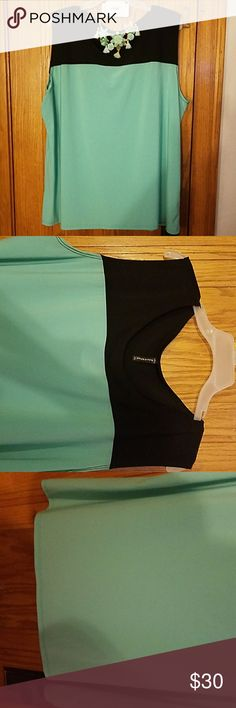 🥝Mint & Navy Blue Silk Dress Tank Top🥝 Great silky Mint and navy blue tank top perfect for a dressy even or work. Dress it up with great necklace very pretty and comfortable. Bleeker & McDougal  Tops Tank Tops