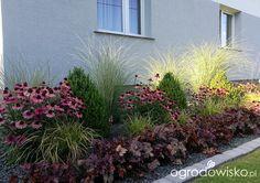 p - Backyard Garden Inspiration Landscape Design Plans, Landscape Edging, Landscape Art, Landscape Paintings, House Landscape, Landscape Photography, Small Front Gardens, Garden Care, Front Yard Landscaping