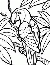 Free coloring pages of templates