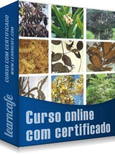 Novo curso online! Conheça as Plantas Medicinais - http://www.learncafe.com/blog/?p=2302