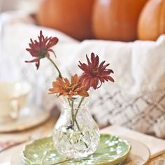 Create an Heirloom Thanksgiving by using vintage linens on your table! This is the time to bring out grandmother's tablecloth or those pretty crocheted doilies. See tips on caring for antique linens at www.mamasmiracle.com.