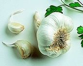 Medicinal Uses of Garlic. Contains allicin which has anti-bacterial properties equal to a weak penicillin. Crush, steam or boil this, it allows for more bloodflow and helps to break down existing clots. Try one of these remedies for increased circulation, immune system boosts, and infection cures.
