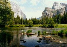 Yosemite National Park - land of the giant sequoias! l love this place and the beautiful waterfall! The kids went swimming right here in 2007!
