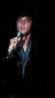 {*Elvis is one gorgeous specimen of life*}