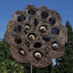 Seed Pod by Tom Hare at Kew Gardens. Photos by Leo Reynolds.