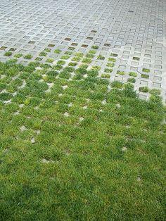 ♂ Green floor landscaping