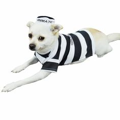 With the Otis and Claude Fetching Fashion Prison Pooch Costume, black and white is the new orange! Dress your #pup up like a classic convict with this hilarious prison uniform costume!