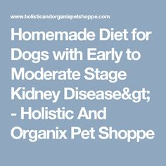 Homemade Diet for Dogs with Early to Moderate Stage Kidney Disease> - Holistic And Organix Pet Shoppe