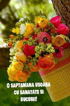 All Flowers, My Flower, Colorful Flowers, Flower Power, Beautiful Flowers, Wedding Flowers, Beautiful Things, Beautiful Flower Arrangements, Floral Arrangements
