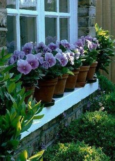 """Excellent Photo Pansies in window boxes Strategies Pansies would be the multi-colored bouquets with """"faces."""" Your cool-weather favourite, pansies are fanta Outdoor Gardens, Beautiful Gardens, Garden Design, Garden Containers, Cottage Garden, Plants, Planting Flowers, Pansies, Garden Inspiration"""