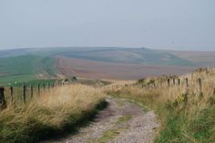 The Wansdyke; a linear earthwork on the northern side of the Vale of Pewsey.
