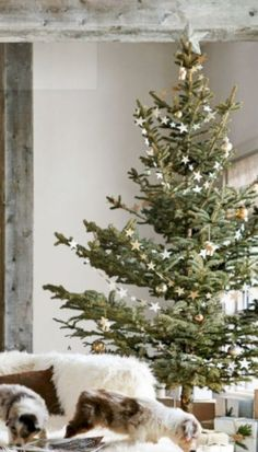 31 Beautiful Scandinavian Christmas Tree Decoration Ideas The little attention to the absolute most passionate party of the year Eieiei, the Christmas celebra Natural Christmas Tree, Diy Christmas Tree, Christmas Love, Country Christmas, Christmas Pictures, Christmas Wreaths, Beautiful Christmas Trees, Burlap Christmas, Xmas Ornaments