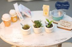 Miniature Pots with Herbs (3pcs) - handmade dollhouse- one inch scale 1:12