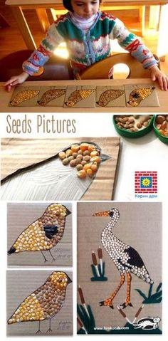 Seeds Pictures   krokotak   Bloglovin'