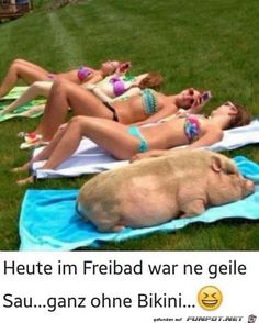 Heute im Freibad - #Freibad #heute Sumo, Wrestling, Sports, Funny Jokes, Lucha Libre, Hs Sports, Sport
