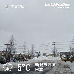 おはようございます! 今季初のまとまった雪です〜