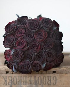 Premium Long Stem 'Black Baccara' Roses- I love that the box these roses are on is stamped with a word that literally means 'bigger pants'.