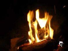 Plonie ognisko w lesie (nasza znajoma wersja) harcerska piosenka. - YouTube