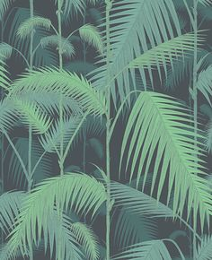 Palm Jungle by Cole & Son. The original Cole & Son Palm Leaves print has been multi layered to create a dense jungle of foliage. Wallpaper Free, Palm Wallpaper, Cole And Son Wallpaper, Green Wallpaper, Wallpaper Online, Print Wallpaper, Wallpaper Roll, Pattern Wallpaper, Leaves Wallpaper