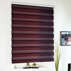 """""""TWIN"""" roló Blinds, Twin, Curtains, Home Decor, Rolo, Master Bedroom Closet, House, Decoration Home, Room Decor"""