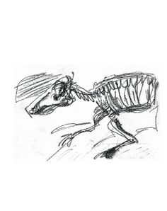how to draw a fossil step by step