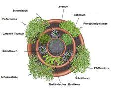 Kräuterspirale planen - Skizze von den verschiedenen Kräutern