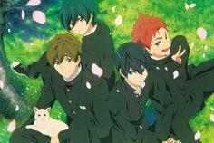 Free!, Nanase Haruka (Free!), Tachibana Makoto, Shiina Asahi, Kirishima Ikuya