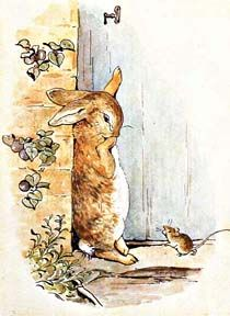 Illustration from the classic children's story The Tale Of Peter Rabbit, by Beatrix Potter Coelho Peter, Beatrix Potter Illustrations, Beatrice Potter, Peter Rabbit And Friends, Rabbit Photos, Bunny Art, Art And Illustration, Illustrators, Drawing People