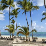 Before you can relax under a canopy of palm fronds on the white sand of one of Punta Cana's legendary beaches, you'll need to decide what to pack for the Dominican Republic and what to leave at home. The tourist resorts in this popular coastal draw are stocked in case you forget any of the basic necessities, but you'll want to make sure you're...