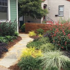 Create a A colorful, inviting, low-maintenance masterpiece Front Yard Plants, Front Yard Landscaping, Low Maintenance Landscaping, Low Maintenance Garden, Landscape Design, Garden Design, Garden Makeover, Garden Borders, House Front