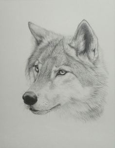 CURRENT WOLF TATTOO 2008 by SlyBlackWolf.deviantart.com on @deviantART