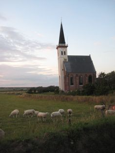 The Lord is my Shepherd ... Surely goodness and mercy shall follow me all the days of my life, and I will dwell in the House of the Lord forever.    Texel, The Netherlands