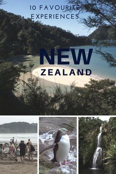 The best sights and experiences of New Zealand!