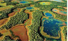 I LOVE MS OFICIAL - Movimento de amor por Mato Grosso do Sul: Bonito e Pantanal irão sediar a primeira Adventure...