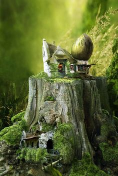 It would be great to create such a scene on top of of one of old tree stumps here.  fairy tale home