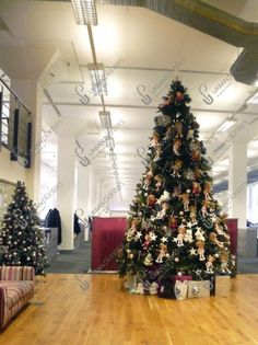 Large Indoor & Outdoor Christmas Tree Hire and Rental Christmas Themes, Christmas Wreaths, Christmas Decorations, Holiday Decor, Urban Planters, Artificial Garland, Festival Decorations, Charity, Plants