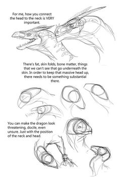 Eat, Sleep and Draw — mudora - Eat, Sleep and Draw — mudora: How to Dragon,. Animal Sketches, Animal Drawings, Art Sketches, Art Drawings, Drawing Animals, Creature Concept Art, Creature Design, Drawing Techniques, Drawing Tips